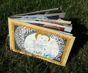 gaia-book-800x664